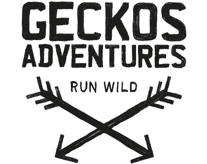 Gecko's Adventures