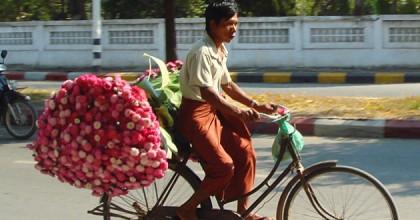 Southern Thailand - Sun, Sand & Sticky Rice